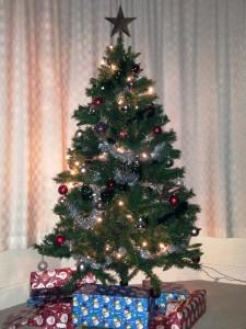Arran tree